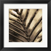 Framed Abstraction