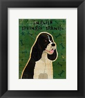 Framed English Springer Spaniel (black and white)
