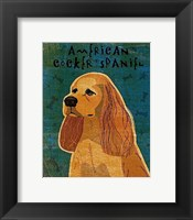 American Cocker Spaniel (buff) Framed Print