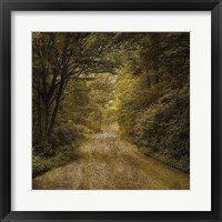 Framed Flannery Fork Road No. 1
