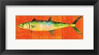 Framed King Mackerel