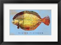 Framed Winter Flounder
