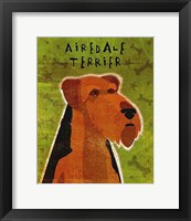 Framed Airdale