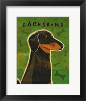 Framed Dachshund (black and tan)