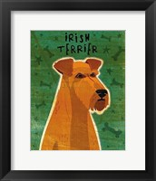 Framed Irish Terrier