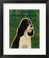 Framed English Springer Spaniel (black and white)