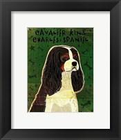Framed Cavalier King Charles (tri-color)