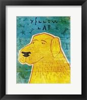 Framed Lab (yellow)