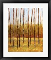 Framed Tall Trees II (right)