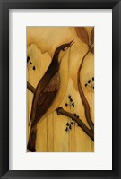 Framed Bird IV