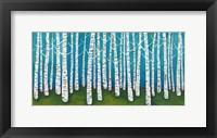 Framed Springtime Birches