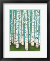 Framed Summer Birches