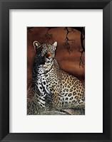 Framed Sitting Leopard