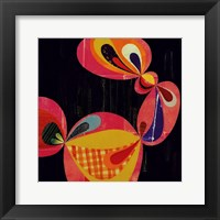 Framed Obscura