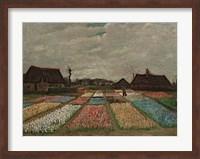 Framed Flower Beds in Holland, c. 1883