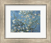 Framed Almond Blossom, 1890
