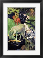 Framed White Horse, 1898