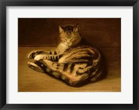 Framed Recumbent Cat, 1898