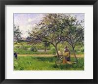 Framed Wheelbarrow, Orchard, c.1881