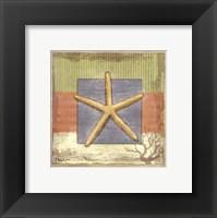 Montego Starfish- petite Framed Print