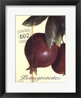 Framed Organic Pomegranates
