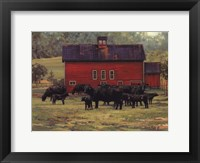Framed By the Red Barn