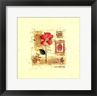 Framed Flower Notes with Pink Poppy