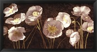 Framed Baroque Poppies