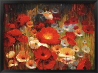 Framed Meadow Poppies I