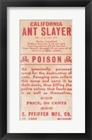 Framed Ant Slayer