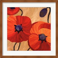 Framed Oriental Poppy L