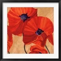 Oriental Poppy R Framed Print