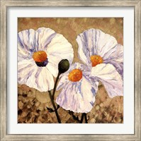 Framed Paper Whites