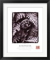 Framed Kindness - Fiddleheads
