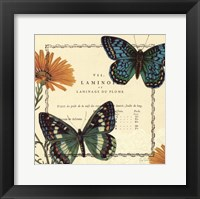Summer Pages III Framed Print