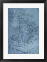 Framed Study of ash and other trees