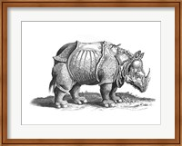 Framed Rhinoceros