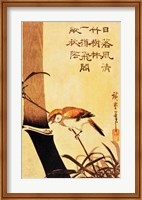 Framed Bird and Bamboo