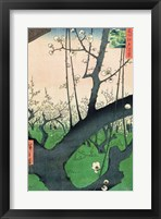 Framed Branch of a Flowering Plum Tree