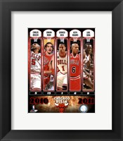 Framed Chicago Bulls Team Comp 2010-11