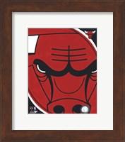 Framed Chicago Bulls Team Logo