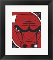 Framed Chicago Bulls Team Logo