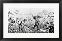 Framed Picking Cotton on a Southern Plantation