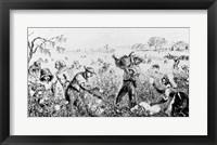 Framed Picking Cotton on a Southern Plantation