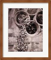 Framed Secret Garden I