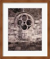 Framed Secret Garden II