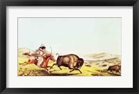 Framed Hunting the Buffalo