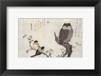 Framed Owl and two Eastern Bullfinches
