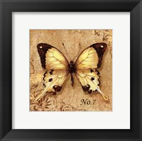 Framed Clair's Butterfly II