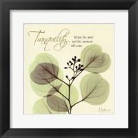 Framed Tranquility Eucalyptus